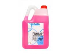 Ordinario Scale Fiorito Detergente per Condomini 5 lt